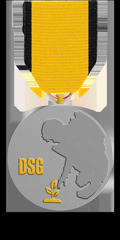 DSG Seeding-Orden